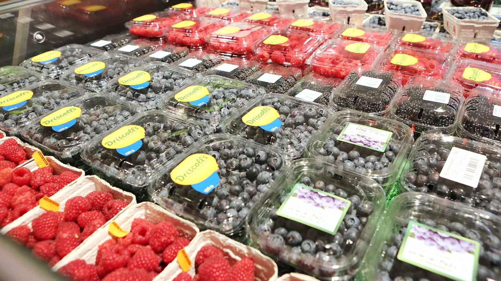 knollesmarkt_querformate_088